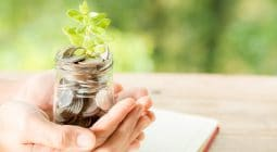 woman hand holding plant growing from coins bottle